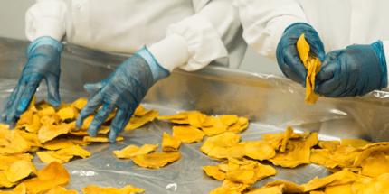 food manufacturers handling dried mango